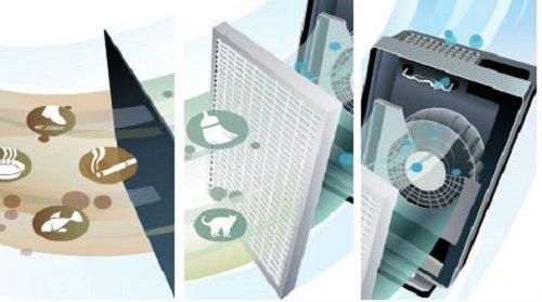 Dịch vụ thay màng lọc không khí tại nhà giá rẻ