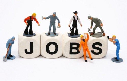 Thông báo tuyển dụng nhân viên từ công ty Vinamo